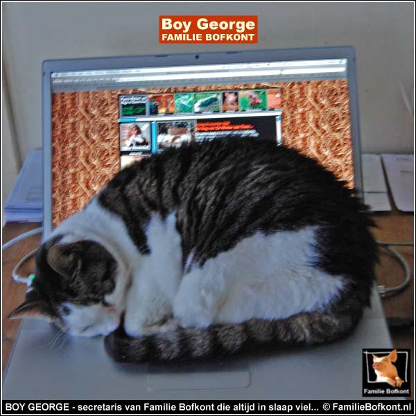 BOY GEORGE - secretaris van Familie Bofkont die altijd in slaap viel...