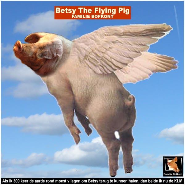 Als ik 300 keer de aarde rond moest vliegen om Betsy terug te kunnen halen, dan belde ik nu de KLM.
